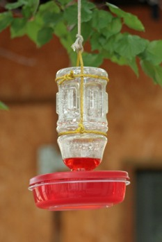 DIY hummingbird feeder hanging